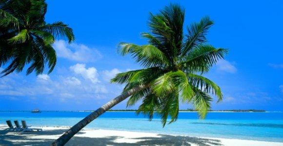 caraibes-plage-antilles-tourisme
